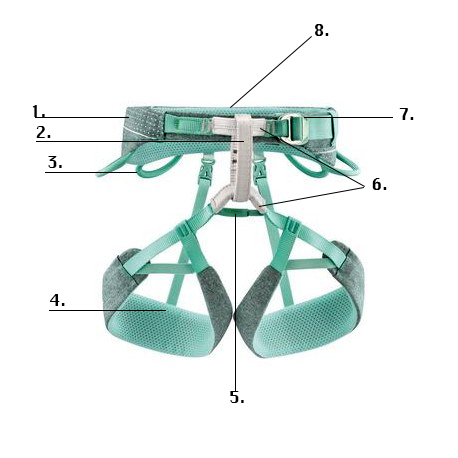 Anatomy of a climbing harness